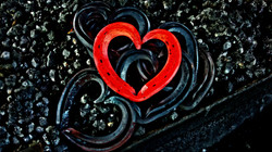 Horseshoe heart Darryl Kotz