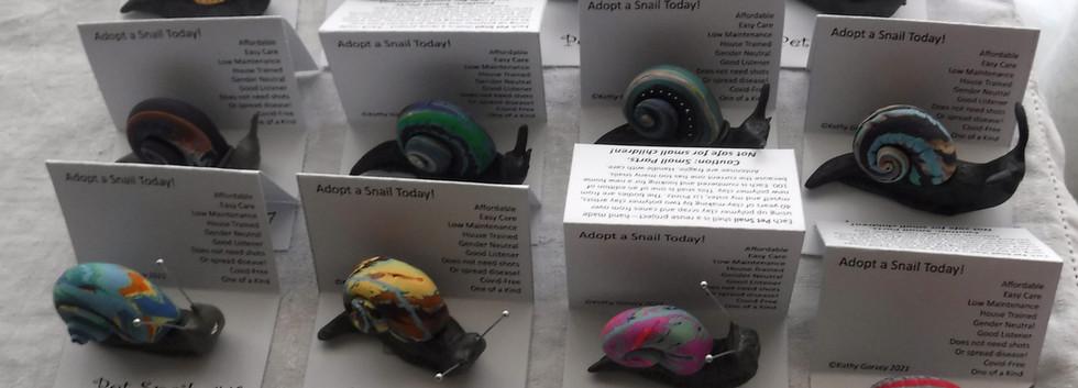 first_12_snails_to_SAL.jpg