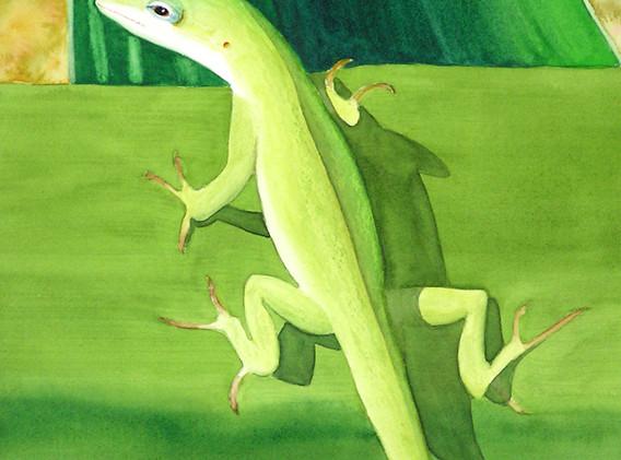 Who you Callin' Gecko