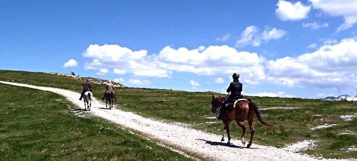 passeggiata trekking lessinia cavalli schinchi verona