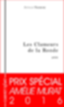 Prix Amélie Murat 2016, Prix Spécial, Arthur Yasmine, Les Clameurs de la Ronde, Carnet d'Art éditions, Omar Youssef Souleimane, Poésie