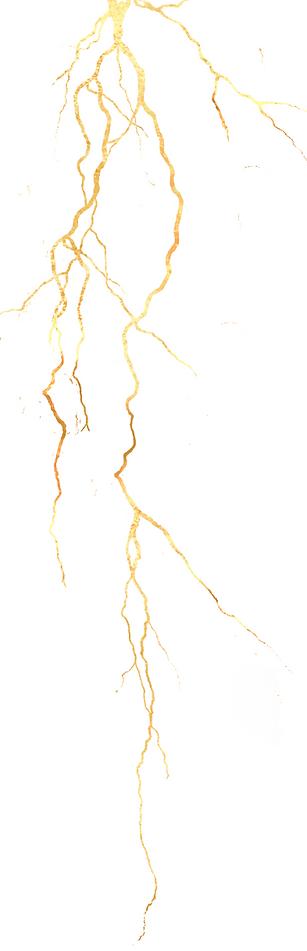Arthur Yasmine, feu sacré, acheter Les Clameurs de la Ronde, rhapsodie, Carnet d'art éditions, procurer, boutique en ligne, premier livre, poète vivant, La dispute, ou les plis du voleur, Lélixire, éditons Robin, rhapsodie, Paroles des jours, Zagdanski