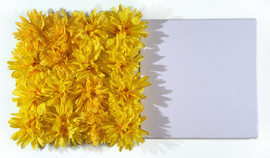 """Fake Flowers and Enamel on Canvas 24"""" x 12"""" 2000"""
