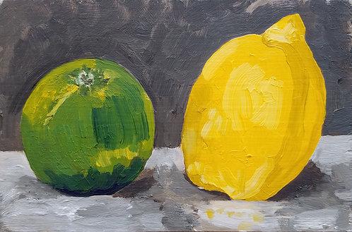 Lime and Lemon (Still Life 7)