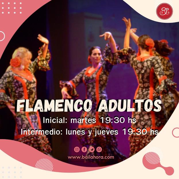 flamencoadultos.jfif