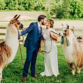 Durham Hill Farm Wedding / Gabby & Jeff / By Alex