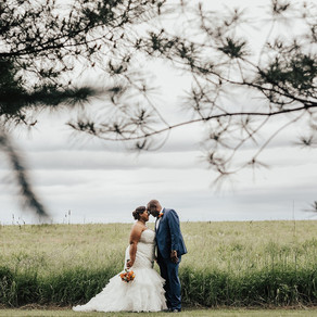 Normandy Farm Wedding / Aisha & Johnny / By Allie