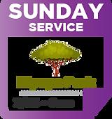 Sunday Park 7-25.png