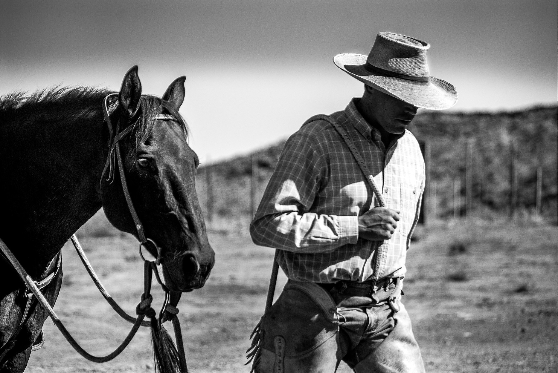 untitled shoot 2010 lone cowboy and hors