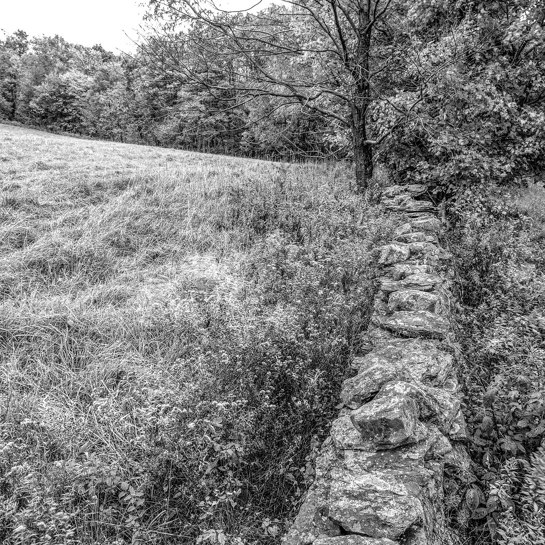wall and hayfield 9036-Edit.jpg