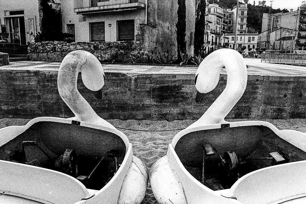 two paddle boat swans in Blanes France 1984