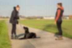 2019-11-16_Hundeschule-65.jpg