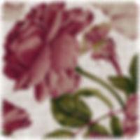 FleuretteLHWhLiOliveNewCut.jpg