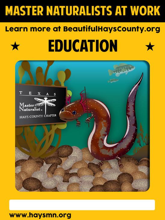 San Marcos Salamander