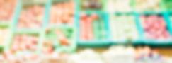sfer-bus_produkmag.jpg