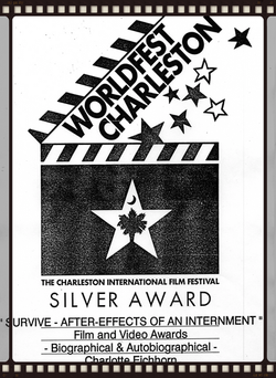 Worldfest Silver Award 1995