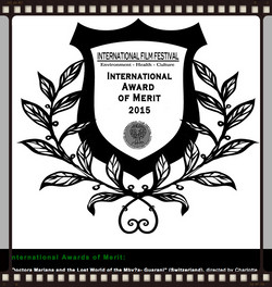 internat award of Merit 2015