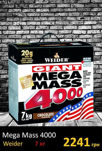 Гейер Mega MASS 4000 7 kg