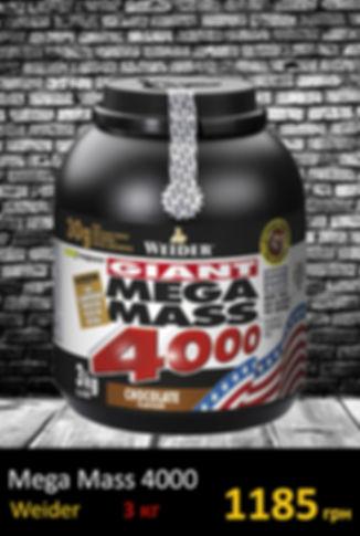 Гейер Mega MASS 4000 3 kg