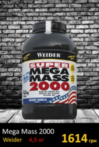 Гейер Mega MASS 2000 4.5 kg