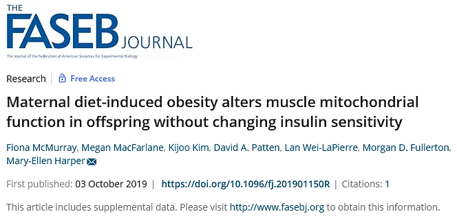 Screenshot 2021-08-17 at 15-10-13 Maternal diet‐induced obesity alters muscle mitochondria
