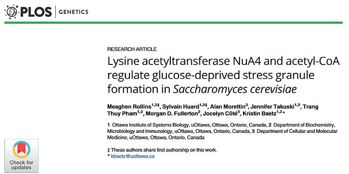 Screenshot 2021-08-17 at 14-51-21 Lysine acetyltransferase NuA4 and acetyl-CoA regulate gl