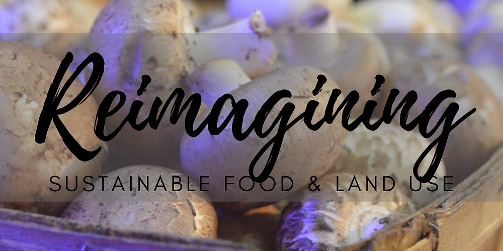 "Header Graphic that reads, ""Reimagining Sustainable Food & Land Use""."