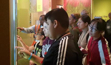 Participants explore exhibits in The Field Museum.