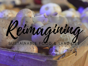 Reimagining Our Sustainable Food & Land Use Programs