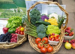 Basket Display at Good Food Festival