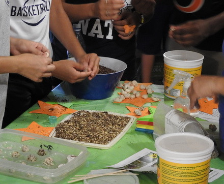 """Kids make """"seed bombs"""" with Openlands."""