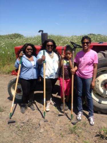 Volunteer Farmers at Mother Carr's
