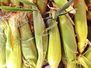 Summer Cooking: Sweet Corn