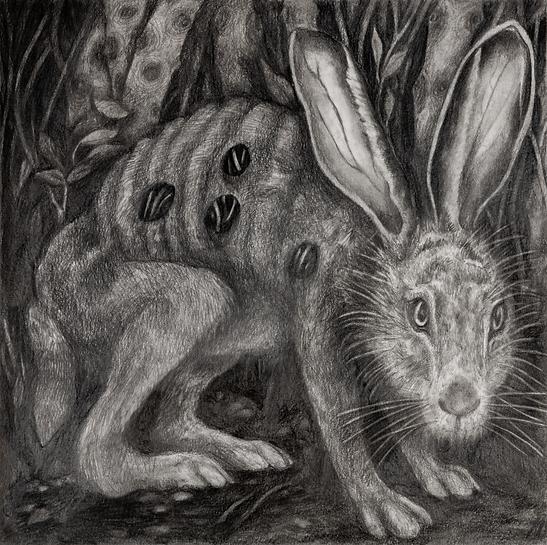 Lisette Chavez Undying Jack-Rabbit