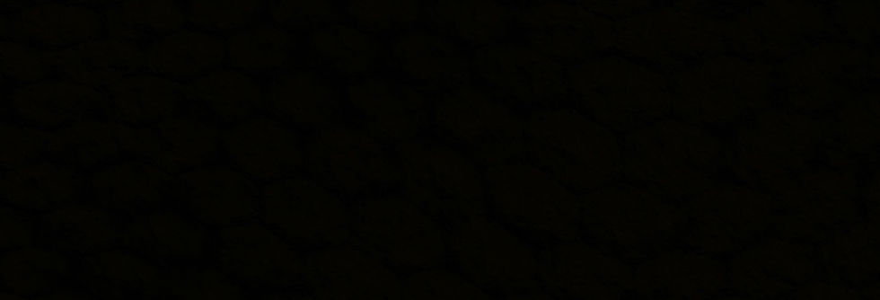 black16_edited.jpg