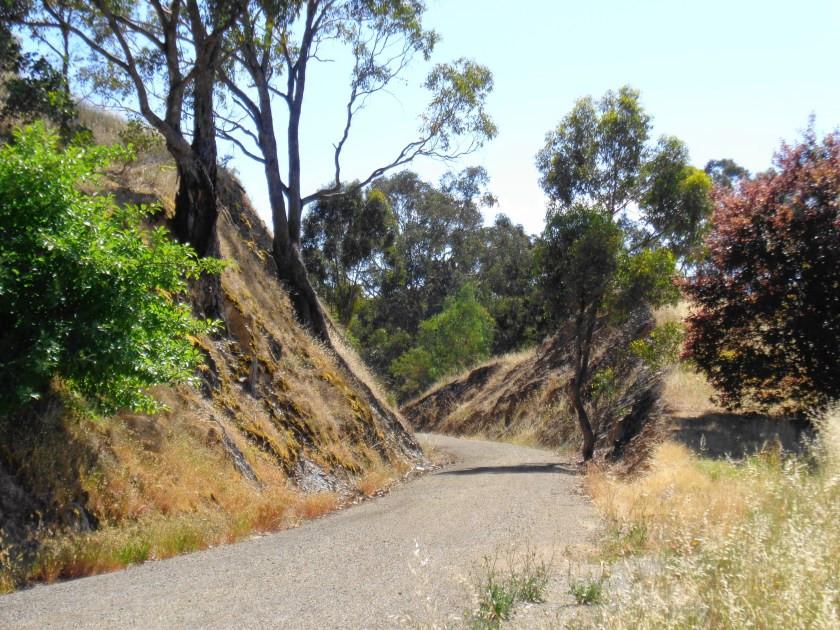 Great-Victorian-Rail-Trail-Alexandra-to-