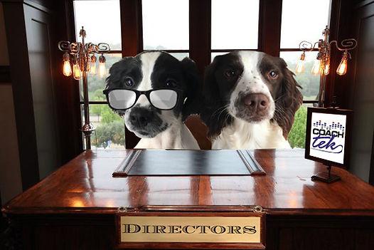 doggy directors.jpg