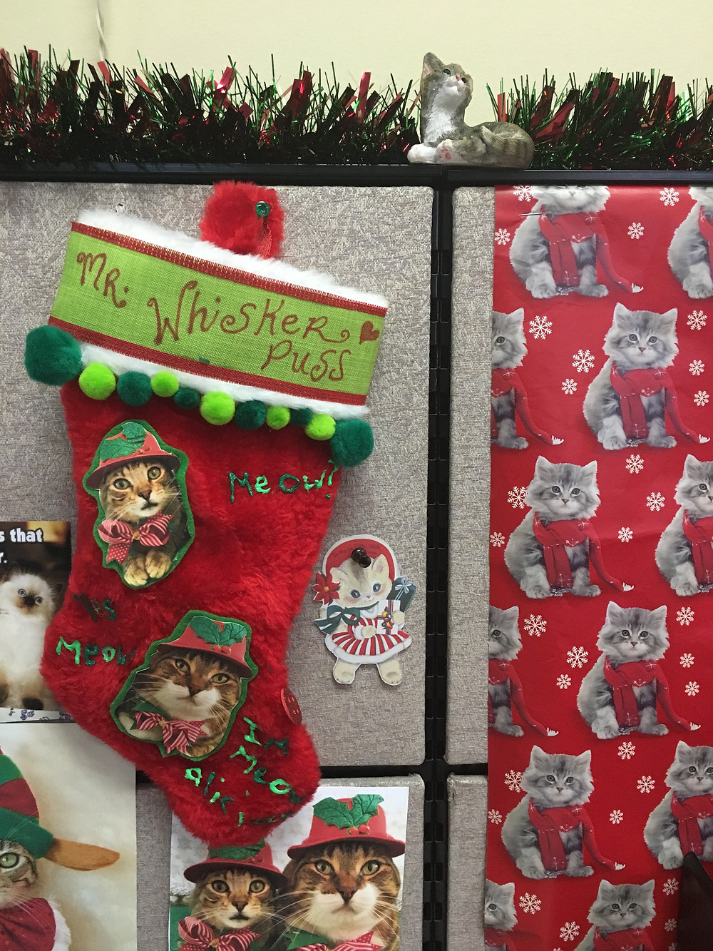 Here's the crazy cat lady's stocking