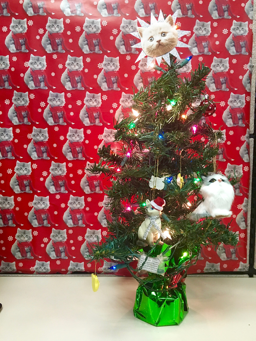 This is the Christmas cat wrapping paper I never thought I'd find and of course a home made star for the tree