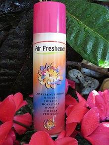 Air Freshener Can