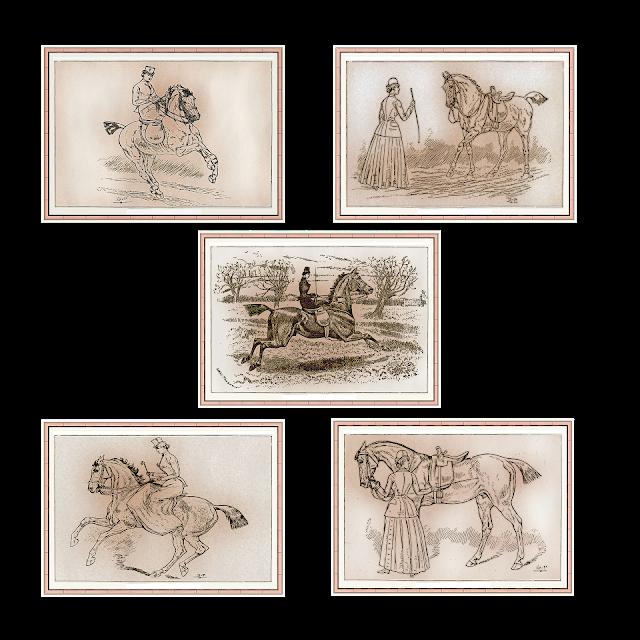 Riding sidesaddle, horses, equestrian, side saddle