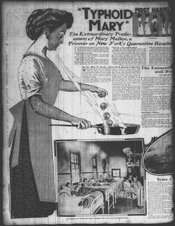 Typhoid Mary, Mary Mallon, Typhoid Fever, Dear Maude