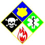 sylvester_consult logo.jpg