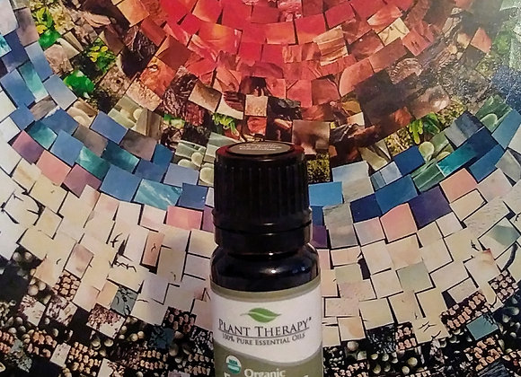 Eucalyptus essential oil - Organic (Eucalyptus globulus)