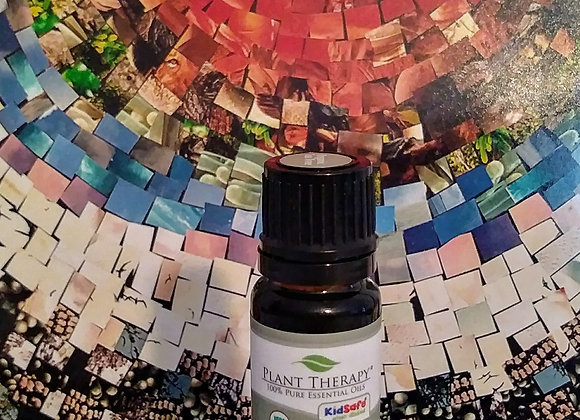 Tea Tree essential oil - Organic (Melaleuca alternifolia)