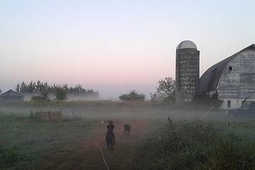 Farm_card background.jpg