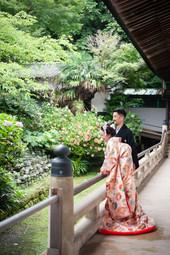 shouko matsuda