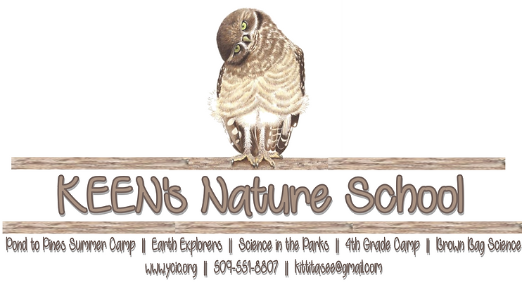 KEENs Nature School Logo.png