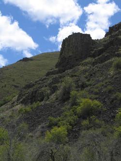 Umtanum Canyon 05-07-11 Raines 7693