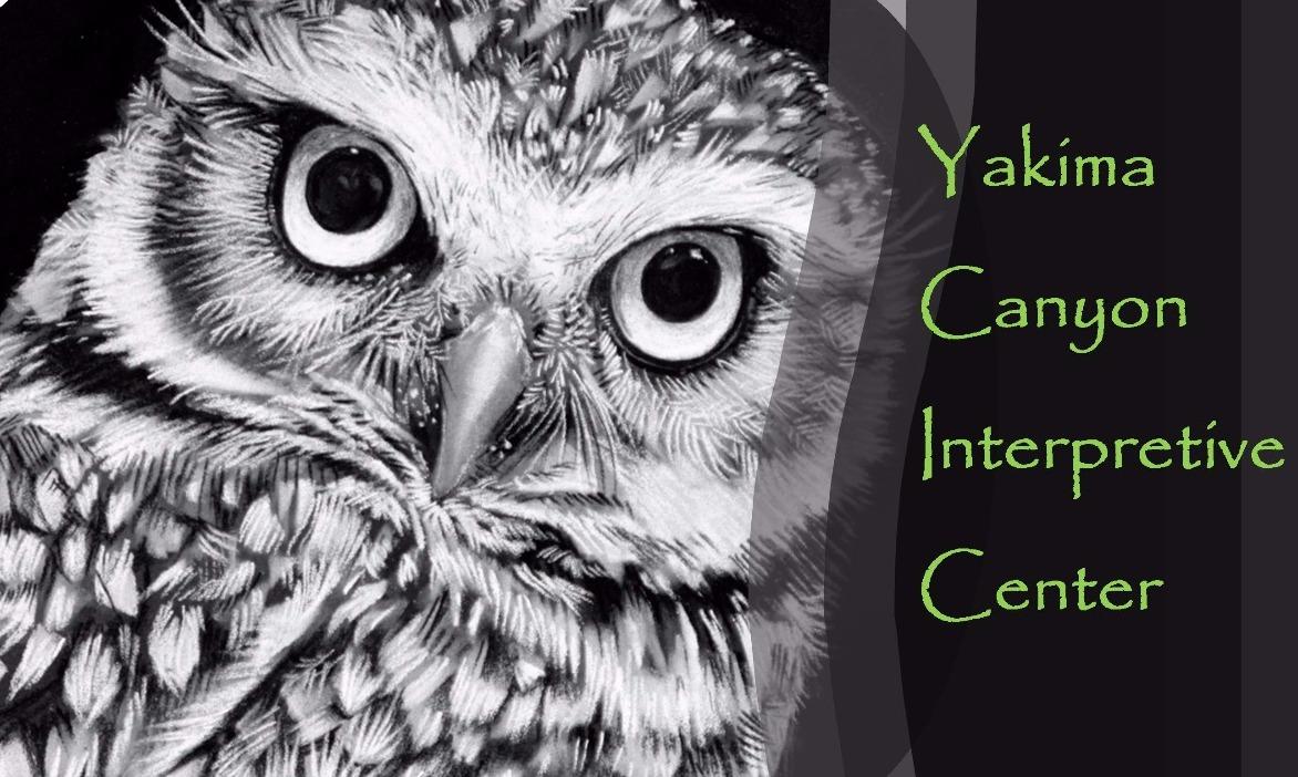 YCIC Logo owl high qual_edited_edited